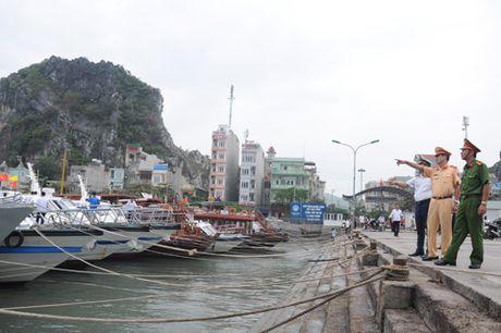 Quang Ninh: Cam bien tu 8h ngay 18-10, van dong tau thuyen ve noi tranh tru bao - Anh 9