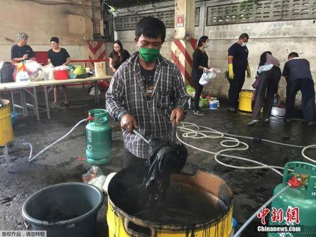Giua thang quoc tang, thanh nien Thai da lam 1 viec nuc long dan - Anh 5