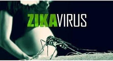 TP.HCM: Nguoi dan lo so dich Zika - Anh 1