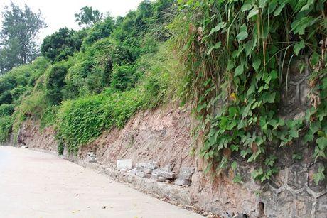 Quang Ninh – Hai Phong: Dan tran chong bao so 7 - Anh 6