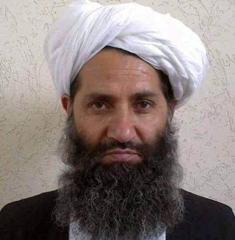 He lo dam phan bi mat giua Taliban va Afghanistan - Anh 1