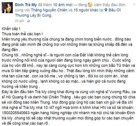 Nghe si Viet dong loat keu goi cong dong chung suc ung ho mien Trung - Anh 4