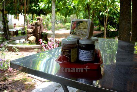 Bai 2: Lao nong che tao may va lam ruou vang cacao 'made in Vietnam' - Anh 1