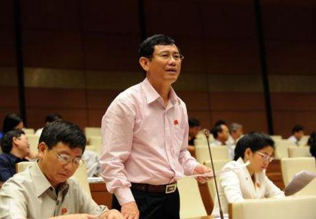 Dung du tru ngoai hoi xu no xau: Viet Nam khong giau - Anh 1