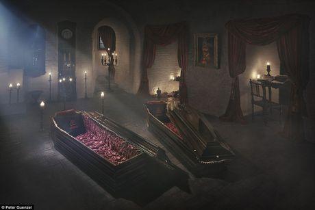 Su that giat minh ben trong lau dai Dracula ngoai doi thuc - Anh 2