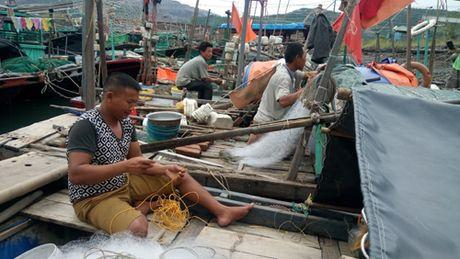 Bao so 7 chi suot qua Quang Ninh, khong gay thiet hai - Anh 1