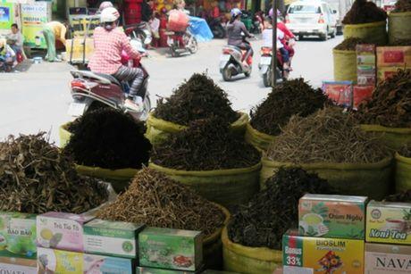 Duoc lieu Trung Quoc: Vua dung vua lo ruoc benh - Anh 2