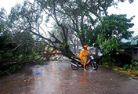 Philippines so tan hang nghin nguoi do sieu bao Haima - Anh 1