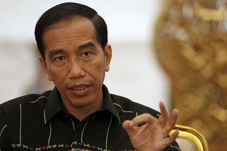 Tong thong Indonesia tin 'thien bang hoa chat' se khien toi pham tinh duc bi xoa so - Anh 1