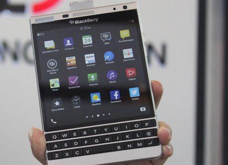 Blackberry Passport Silver Edition gia re xuat hien tai Viet Nam - Anh 1