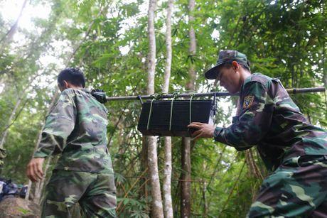 Dua thi the 3 phi cong tu nan trong vu may bay roi ve TP.HCM - Anh 8