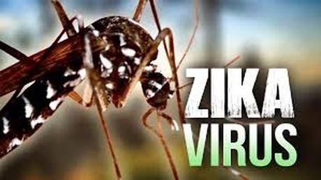 TP.HCM: Phat hien them mot ca nhiem virus Zika - Anh 1