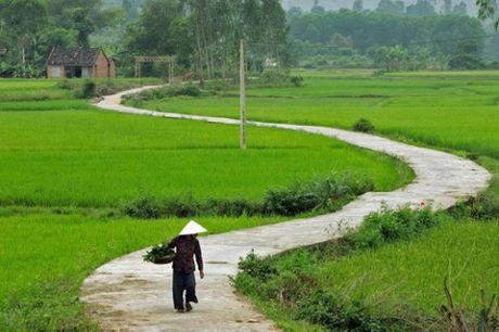 Loạt ảnh làng quê Việt Nam đẹp như thời bao cấp