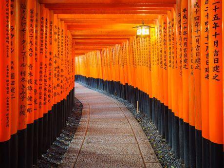 Ve dep ngat ngay cua Kyoto va Tokyo - 2 thanh pho tuyet voi nhat the gioi - Anh 3