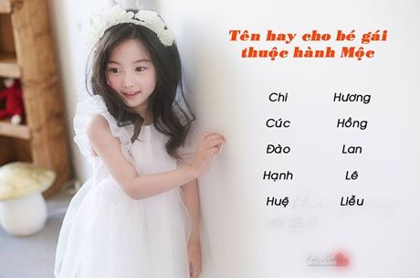 Dat ten cho con sinh nam Dinh Dau 2017 hop voi phong thuy - Anh 2